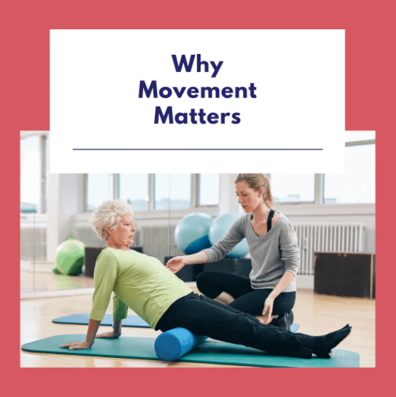Why Movement Matters